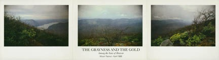 Photograph - The Grayness and the Gold